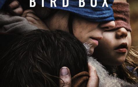 BirdBox Review